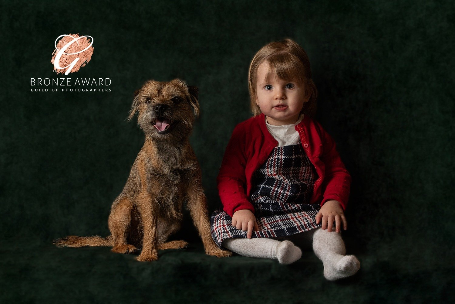 dog photographer corby market harborough